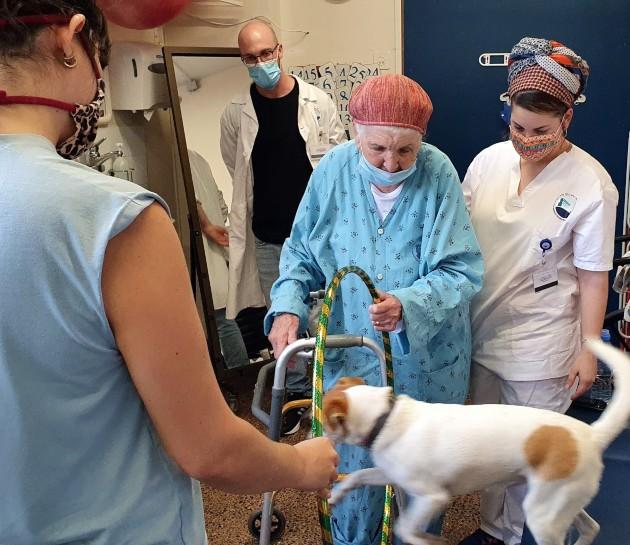 שיקום בשילוב כלב. צילום דוברות המרכז הרפואי פדה-פוריה