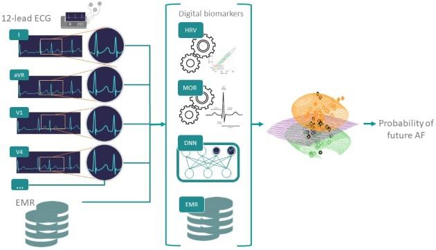 מבט על הסביבה הניסויית: סמנים דיגיטליים (HRV ו-MOR), תכונות של למידה עמוקה (DNN), ונתונים קליניים (EMR) משולבים יחד באימון מודל לחיזוי פרפור פרוזדורים. צילום באדיבות הטכניון
