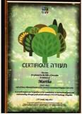 נטיעת עצים לזכרה Trees plant in Jerusalem
