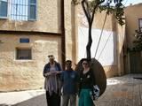 """Old Jaffa - Hanging Tree  ביפו העתיקה """"העץ התלוי"""""""