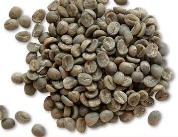 פולי קפה ערביקה G4-5