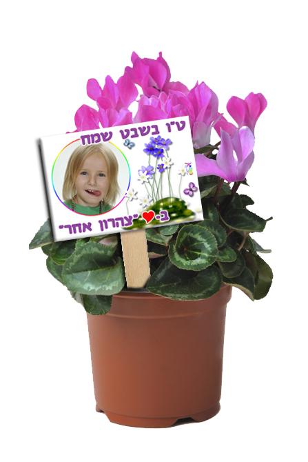 עציף פרח עם שלט אישי דגם סגול