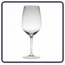 כוס יין אוניברסל