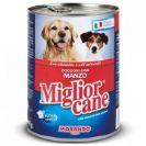 מיגלור כלב מגוון טעמים
