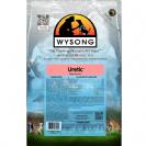 וויסונג - WYSONG