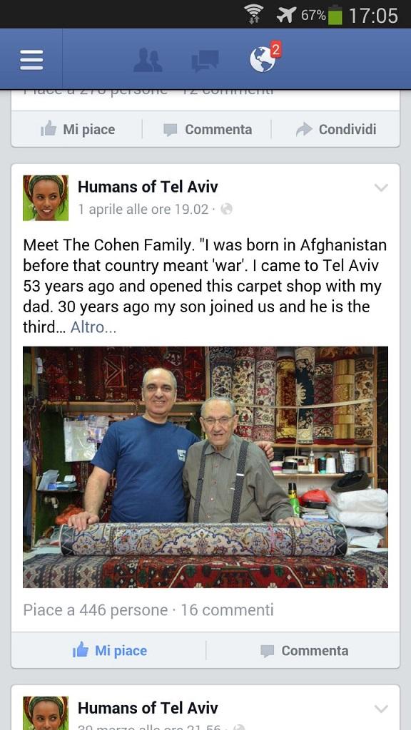 כהן שטיחים יומנס תל אביב