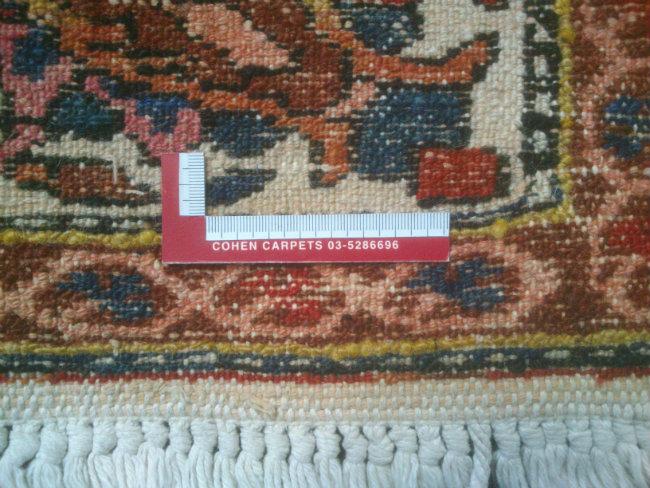 גב שטיח בכטיאר