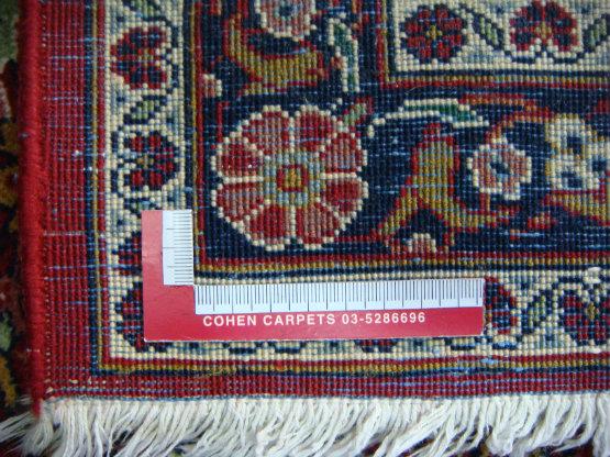 גב שטיח ביג'אר