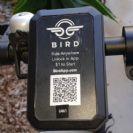"""צעירי קליפורניה """"עפים על עצמם"""" עם ה-e-Scooter קורקינט בשם Bird (ציפור)"""
