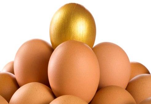 ביצי זהב