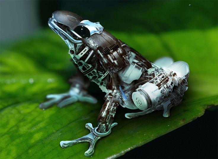 צפרדע רובוטית