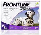 """3אמפולות טיפות פרונטליין  20-40 ק""""ג כלבים אמפולות לפרעושים וקרציות"""