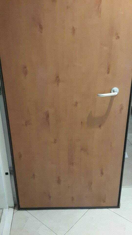 קיצור דלת בשפלה