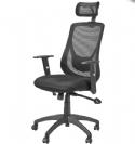 """כיסא מנהלים משרדי אורתופדי של ד""""ר גב"""