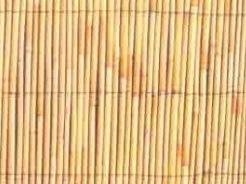 במבוק צהוב
