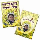הגדה דגם אביבי - דו צדדי