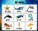 לוח תוכן חיות ים