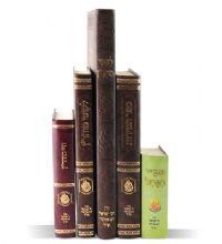 Breslov books