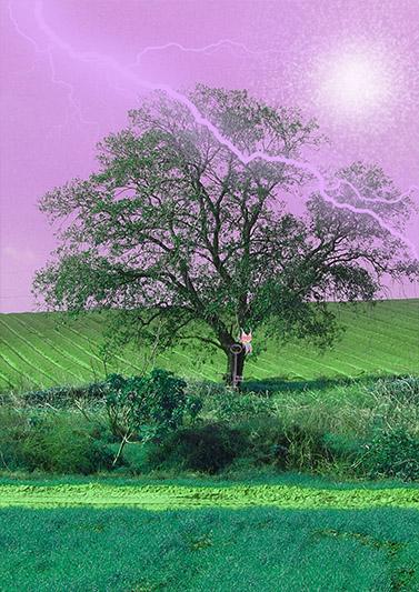 ברקים בשמים ורודים- קנבס הדפסת תמונות