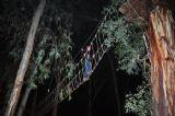 פעילות אתגרית לילית וסנדאות הישרדות לעובדים ולילדים ביער בראשית