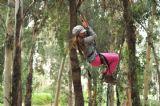 קפיצות מהעצים על חבל, ילדה מתעופפת בין העצים ביער בראשית, המקום האידיאלי לעשות ימי כיף וימי גיבוש