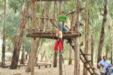 קפיצה מצמרות העצים במסלול מכשולים של יום כיף לילדים וקייטנות ביער בראשית