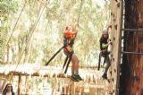 קיר טיפוס ביער בראשית, האם אתם חזקים מספיק ?