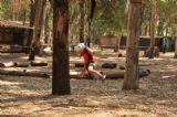 ילדים עוברים מסלולי מכשולים באתר האטרקציות של ישראל, יער בראשית