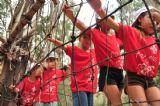 ילדים ביום כיף של קייטנה עוברים מסלול מכשולים מאתגר הכולל גם גשר חבלים צר שדורש ריכוז ומיומנות בשביל לחצותו