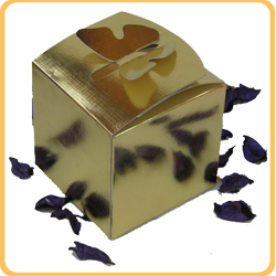 אריזת פרפר זהב