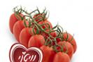 הזרע: חידושים של פירות וירקות לראש השנה 2018