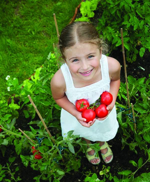 מוצרי עזר לבית ולגינה
