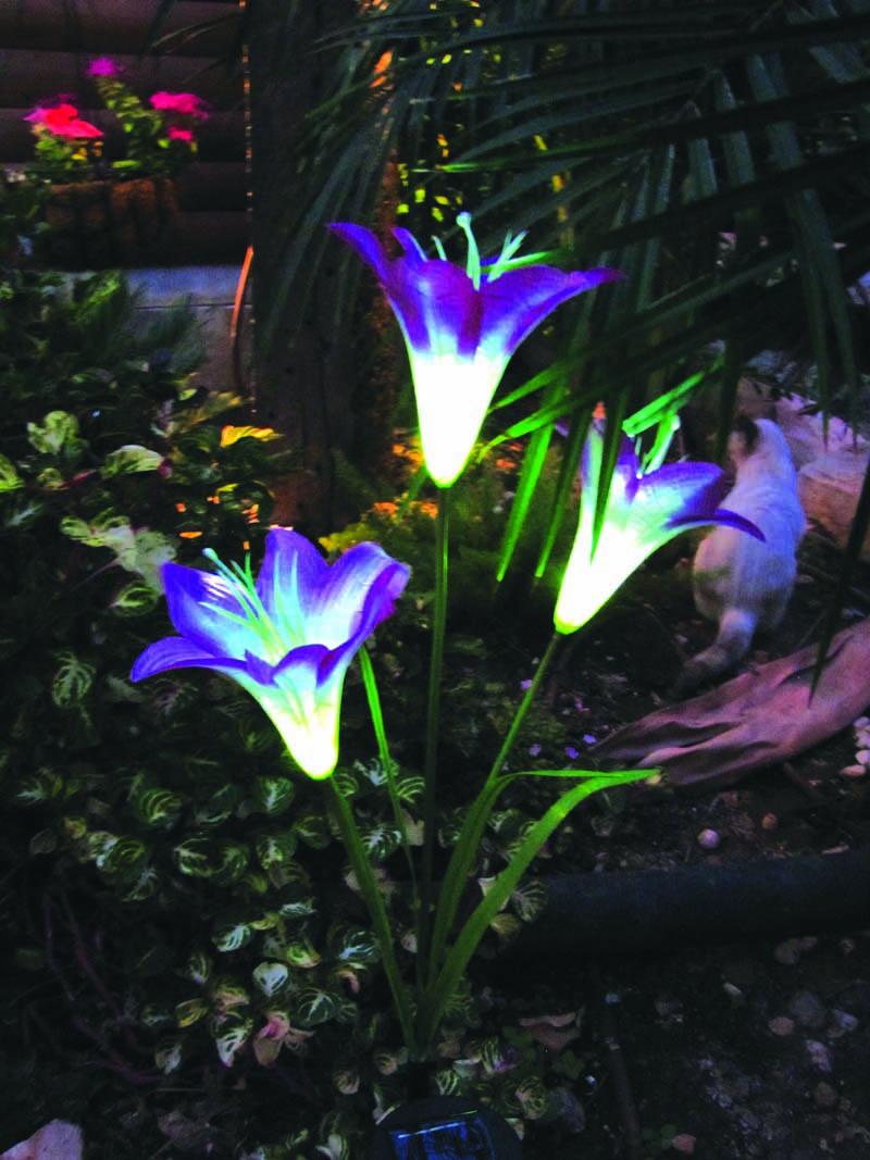 תאורה סולרית, נוי  לגינה ולחצר במגוון צורות