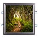 מנורת יער