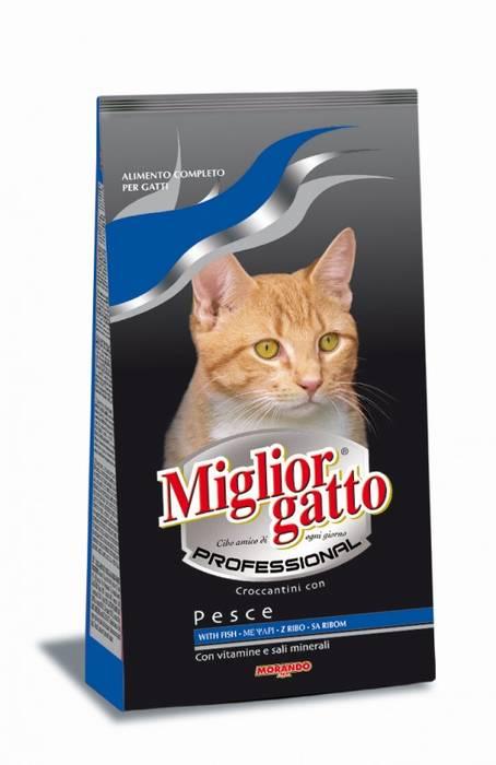 """miglior gatto מזון יבש מלא לחתולים בטעם דגים 2ק""""ג"""
