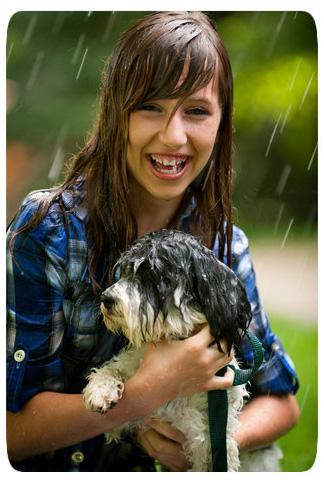 כלבים בגשם
