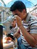 מעבדה מדעית
