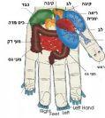 טיפול ותמיכה בחולה האונקולוגי