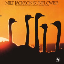 Milt Jackson Sunflower