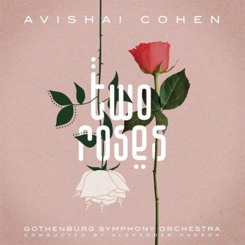 Avishai Cohen Two Roses