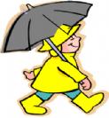 שדה של מטריות