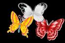 שלושה פרפרים