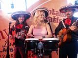 בקמפיין פוקס מקסיקו