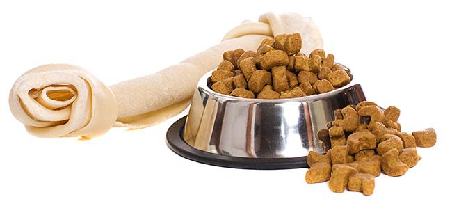 מזון וציוד לבעלי חיים