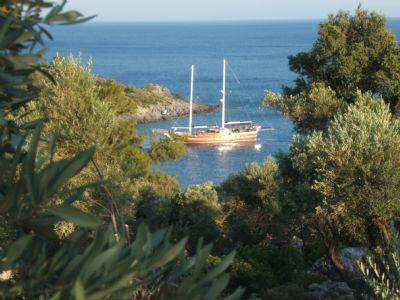 השכרת סירות באילת