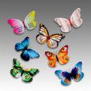פרפרים מגנטים