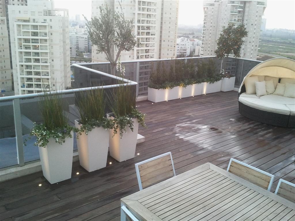 גגות מעוצבים