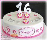 התאומות דנה ושני חוגגות יום הולדת 16!