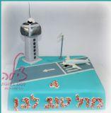 עוגת שדה תעופה ליום ההולדת של בן שחובב מטוסים