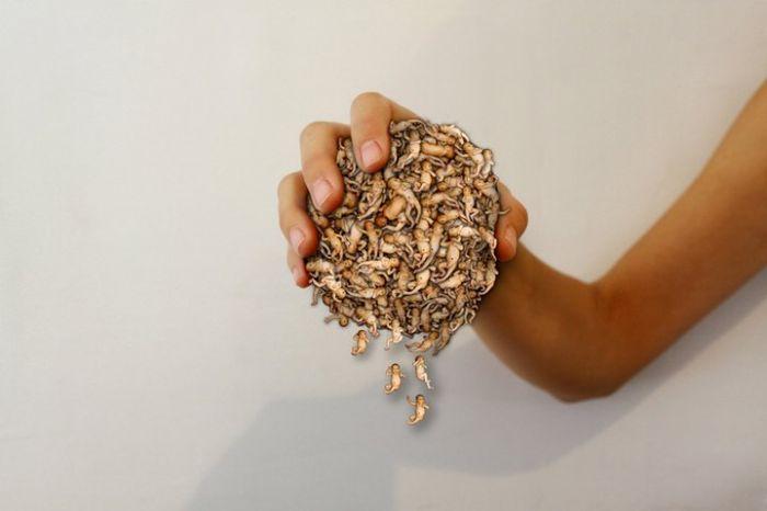 """אלדד פניני, אמנות דיגיטלית, 50 על 70 ס""""מ"""